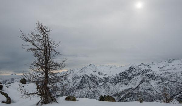 Prime nevi nel Parco del Mont Avic