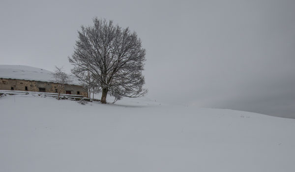 Ultima nevicata? (al quadrato)